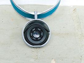 Round cat camera close up.jpg