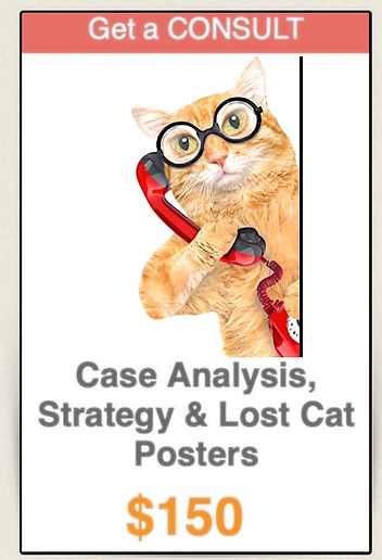Lost cat finder tips phone consult help.