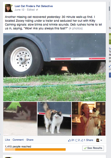 Zoey Lost cat found in 30 minutes