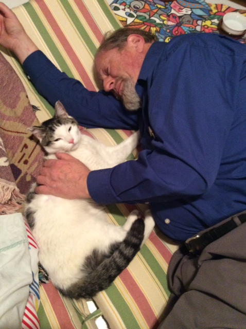 Lost cat Ray reunited in Chicago
