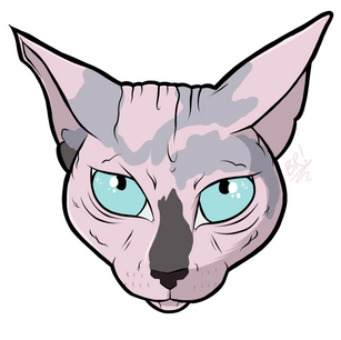 Kitty 1/2 [Pet Portrait]
