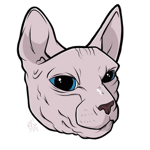 Kitty 2/2 [Pet Portrait]