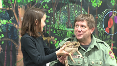 michael and girl rainforest reptiles.png