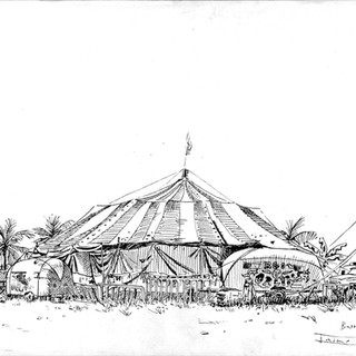 Circo Orlins