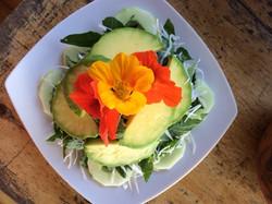 avocado salad with nasturtiums