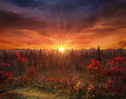 Solar Memory