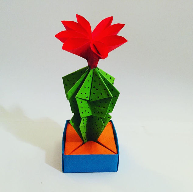 A flowering cactus, in a little holder / pot