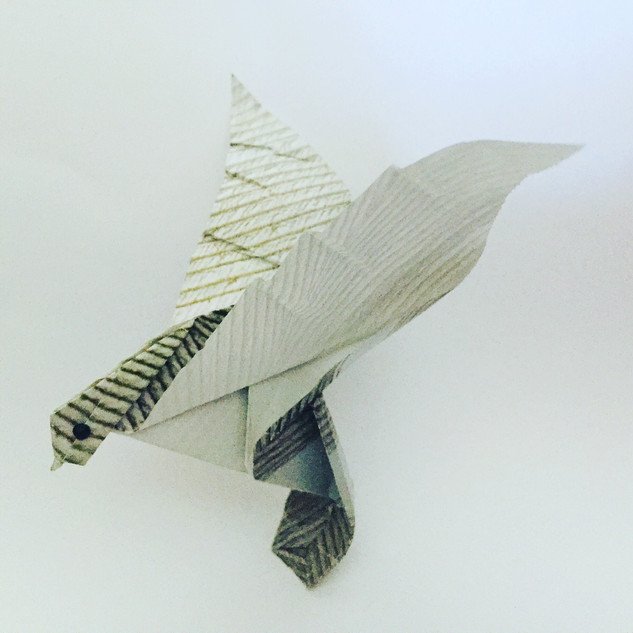 A dove. Possibly from above. Uses only a half sheet of origami paper.
