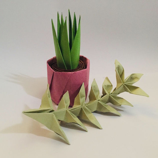 A pot plant. Absolutely one of my faves, it is so very tactile.
