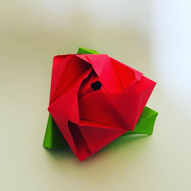 A rose in a cube. Yes, it looks like a cube, but it's actually a rose.