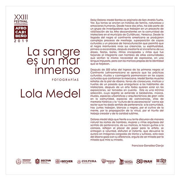 Texto sala_Lola Medel de 244 x 244-curva