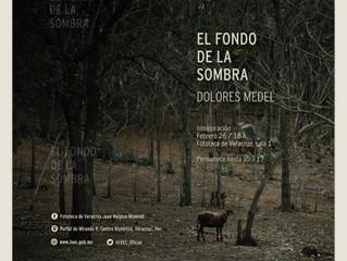 El FONDO DE LA SOMBRA, DE VUELTA EN VERACRUZ