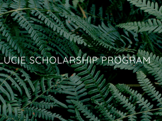 THE 2018 LUCIE FOUNDATION EMERGING SCHOLARSHIP SHORTLISTS HAVE BEEN ANNOUNCED!