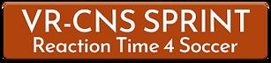 vr-cns sprint soccer.png