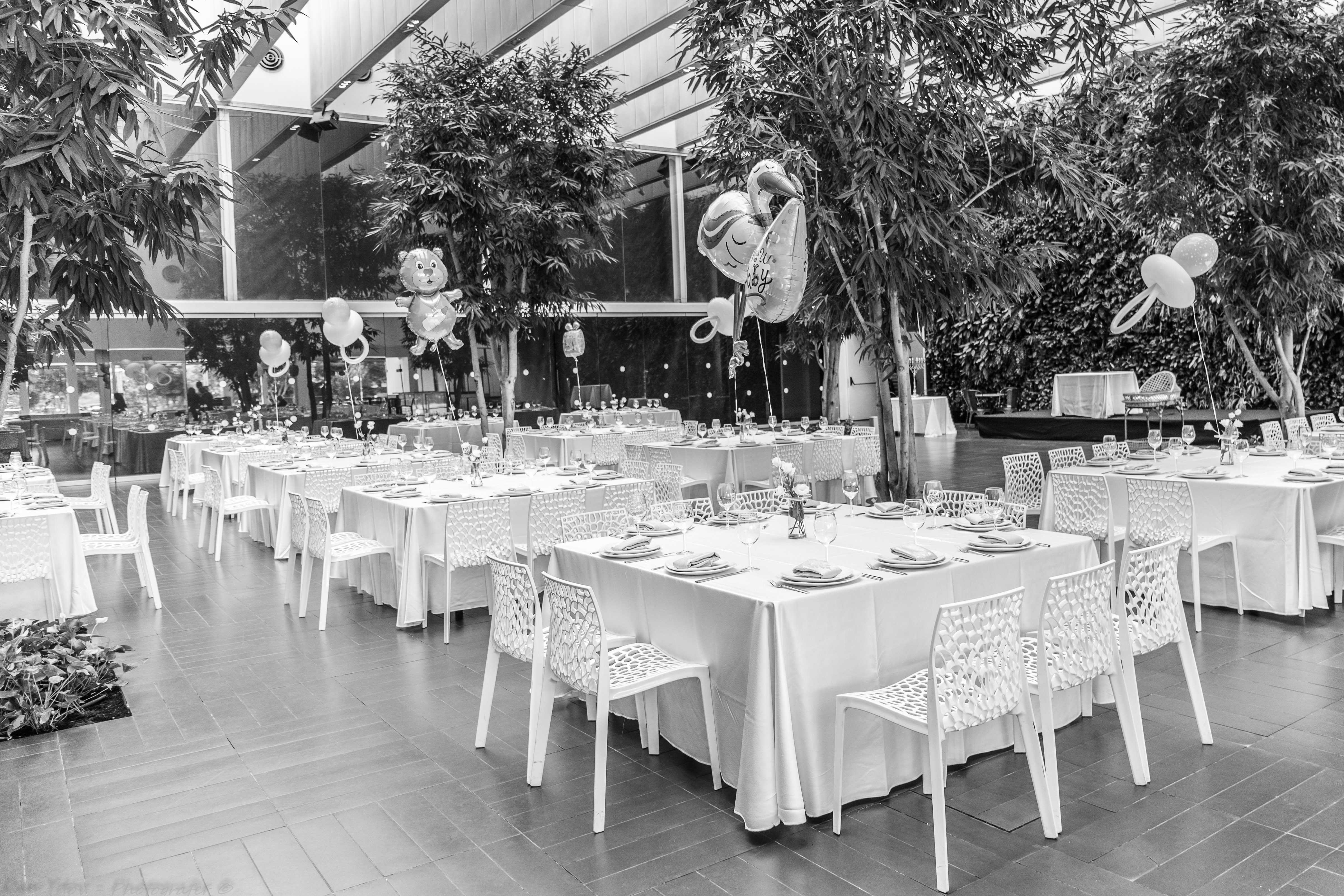 Dan Ydov Photographer|Events