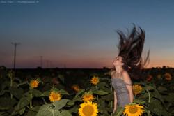 Portrait, Portraiture, Sunflowers