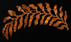 Oregon Seaweed - open