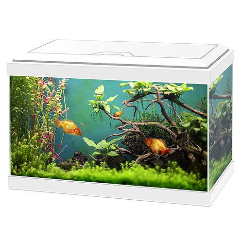 Ciano Aqua 20 Classic Aquarium White/Black with Filter