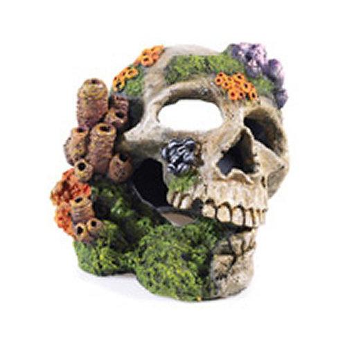 Classic Skull 2690
