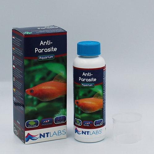 Aquarium - Anti-Parasite