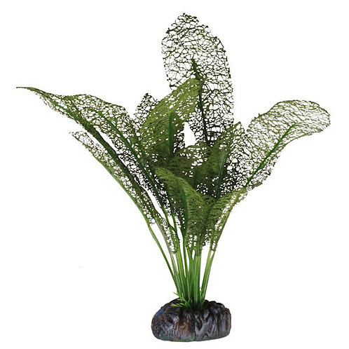 Betta Choice 30cm Silk Green Lace Plant