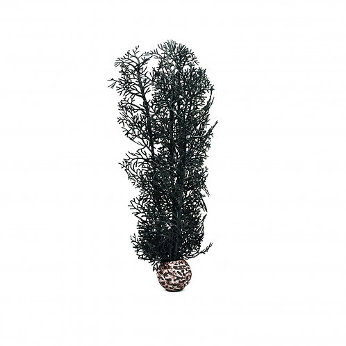 Biorb Sea Fan in Black