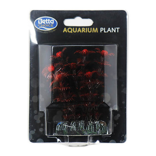 Betta Choice 8cm Black Plant With Red Berries
