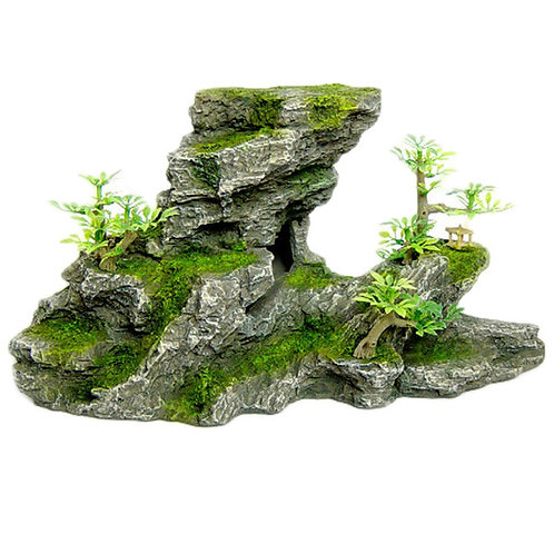 C-Shape Rock Formation With Plant