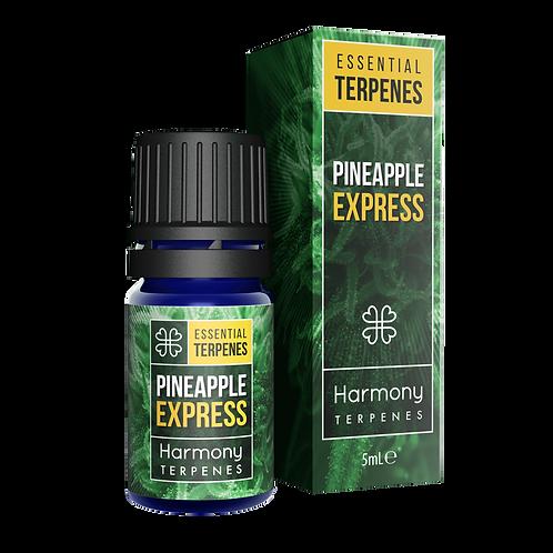 เทอร์พีน Pineapple Express เกรดอาหาร (ขั้นต่ำ 100 มิลลิลิตร)