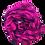 Thumbnail: Erkroosa  ja musta ruuduline kašmiirsall