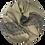 Thumbnail: Kašmiirsall  hallikas pruun sissekootud mustriga