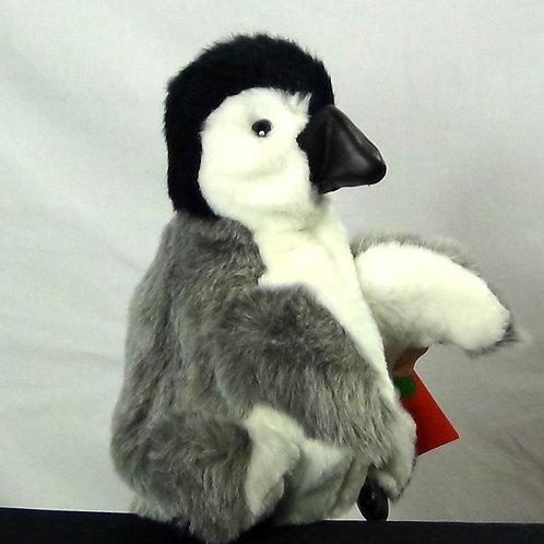Baby Emperor Penguin - (D)