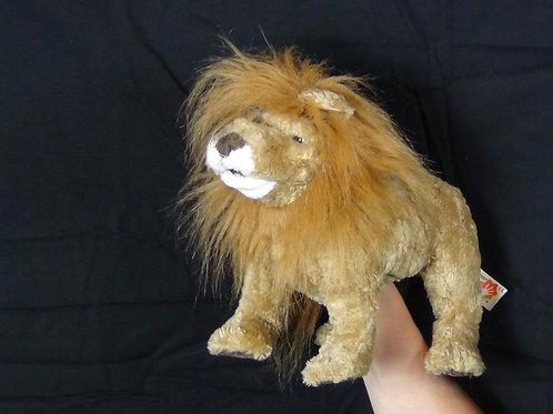 Web Wild Lion - (D)