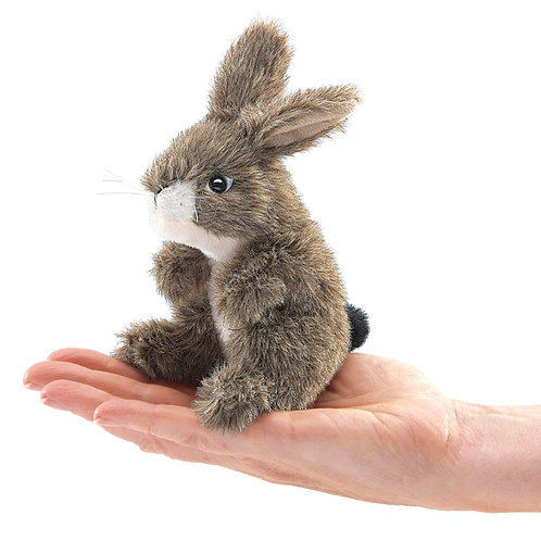 Mini Jack Rabbit