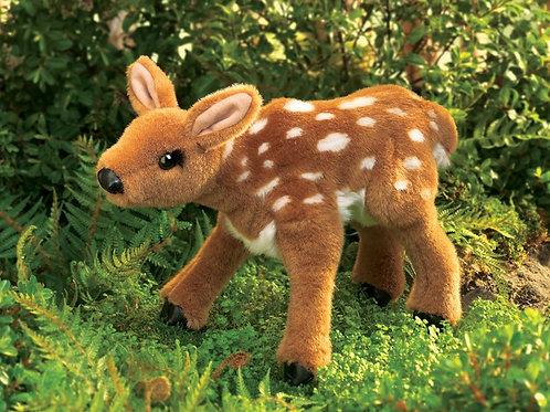 Fawn, Deer