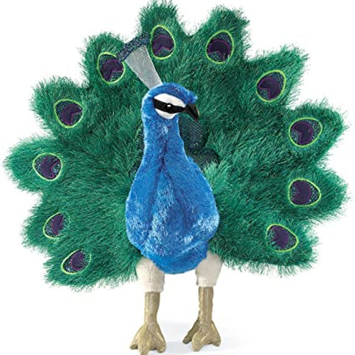 Peacock - (D)