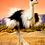 Thumbnail: Ostrich - (D)