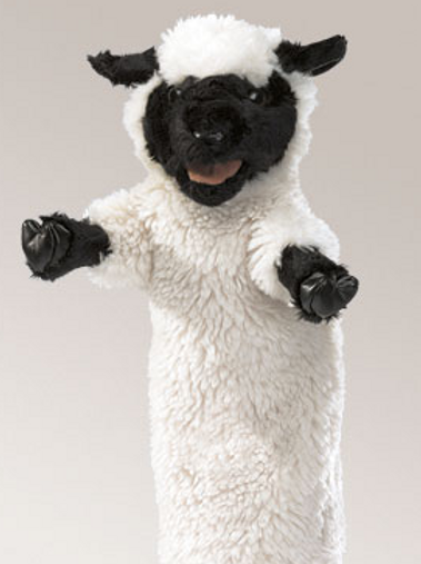 Black Faced Sheep Stage- (D)