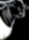 dorper_head-161x217.png