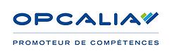 Carlier-Buthaud-Disciplinepositive-LogoO