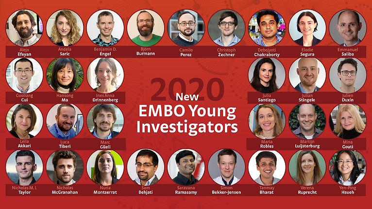 yips_2020_social_media.jpg