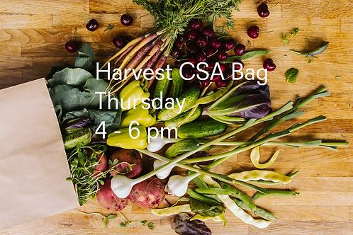 Harvest CSA Bag @ 4-7 pm - Thursday Oct 29
