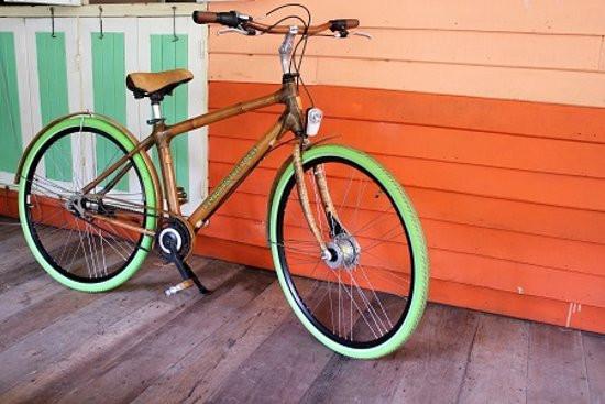 Stylish bamboo bicycle M.A.D Organics