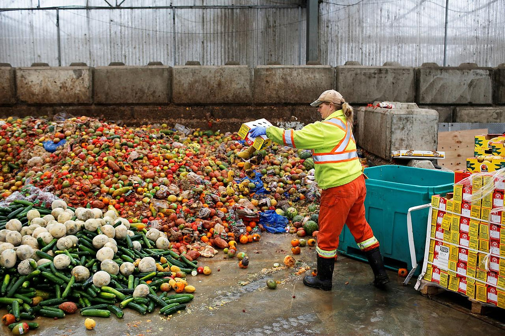 1.3 billion tones of food is wasted each year