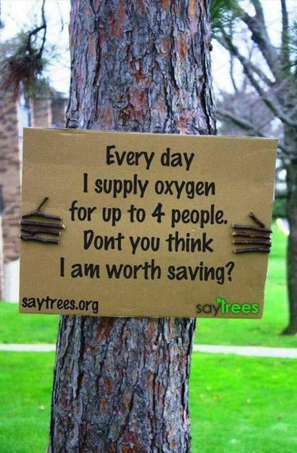 Sustainable living sayings Make a difference organics