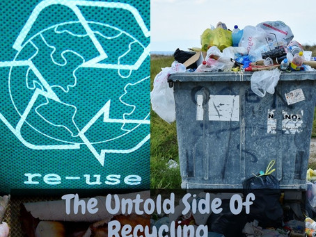 Is Recycling a Myth: The Dark Side of Recycling Practices That Will Blow Your Mind