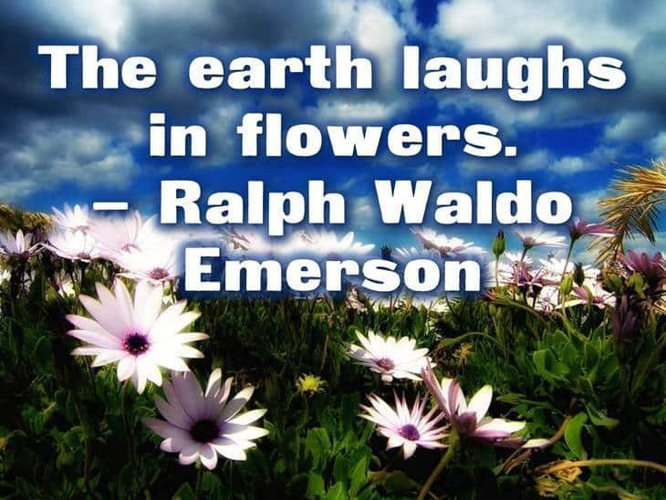 """The earth laughs in flowers"" - Ralph Waldo Emerson Environmental quotes Make a difference organics"
