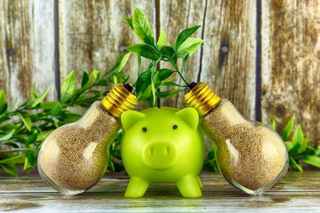 Green piggy bank save cash by reducing your energy bill