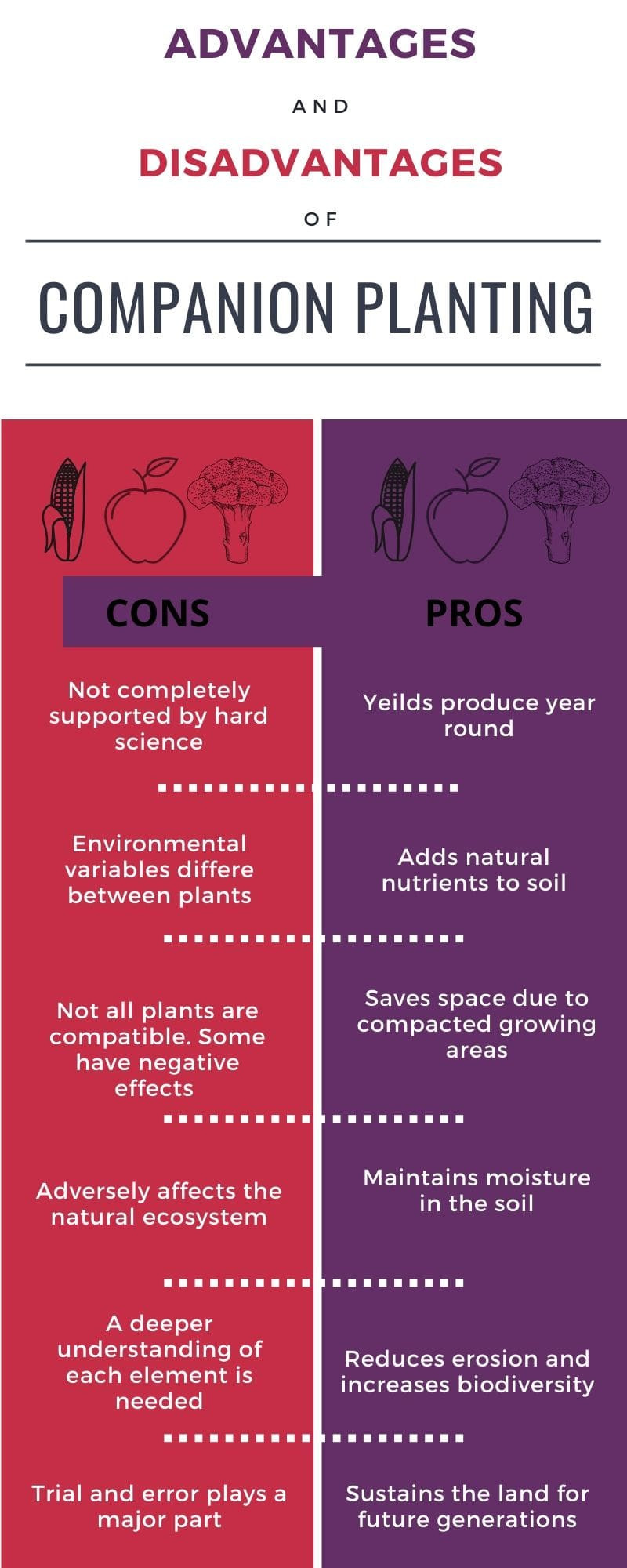Pros and cons of companion planting infographic