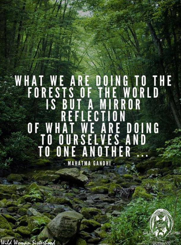 Sustainable lifestyle quotes M.A.D Organics